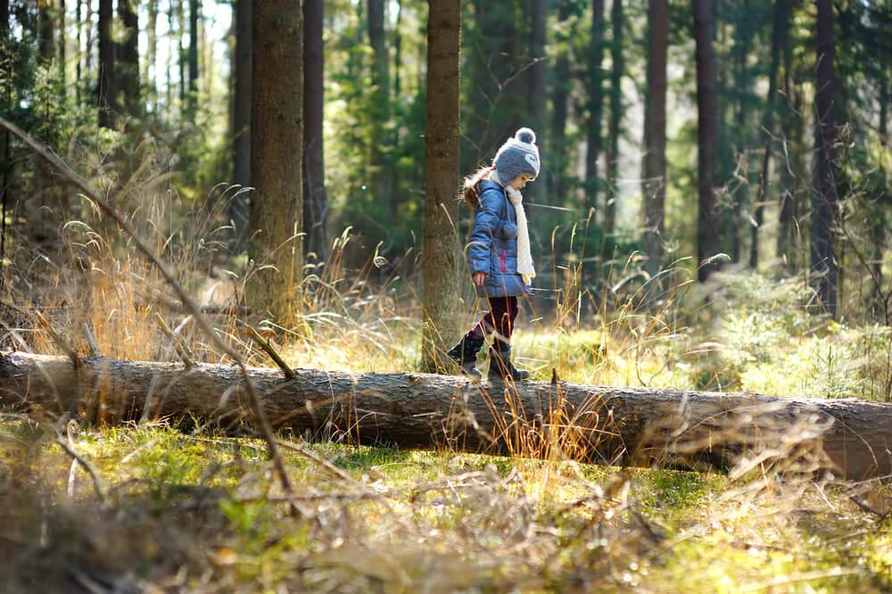 Kinder im Wald - Balancieren